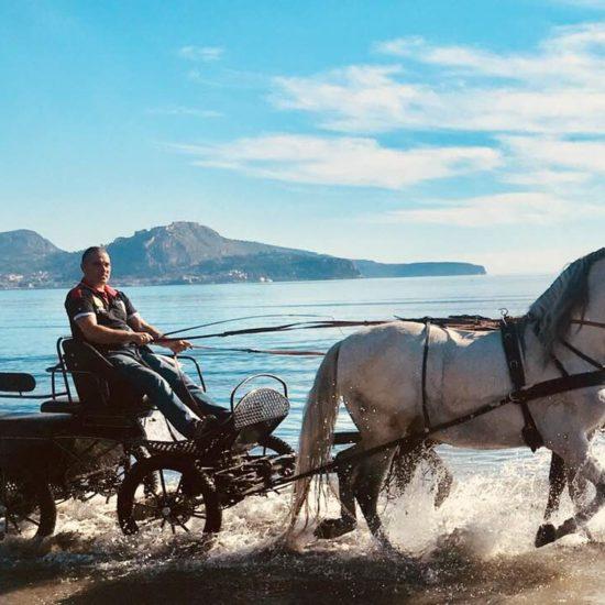 Chariot Romantic Ride